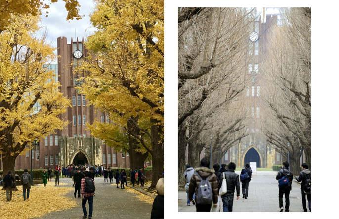 Đại học Tokyo, cơ hội du học tại ngôi trường hàng đầu Nhật Bản 2
