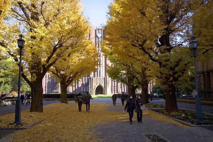 Đại học Tokyo, cơ hội du học tại ngôi trường hàng đầu Nhật Bản 8