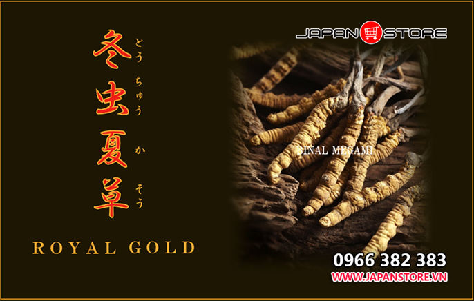 Dong trung ha thao Royal Gold Tohchukasou 420 vien 5