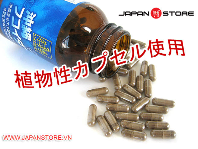Fucoidan Okinawa Fucoidan Nhat Ban 3