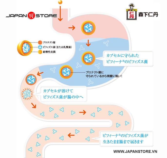 Men vi sinh Bifina EX Nhật Bản - 10 tỷ lợi khuẩn 2
