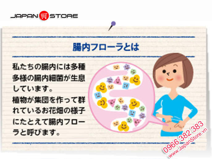 Men vi sinh Bifina S Health Aid 30 gói của Nhật Bản 2