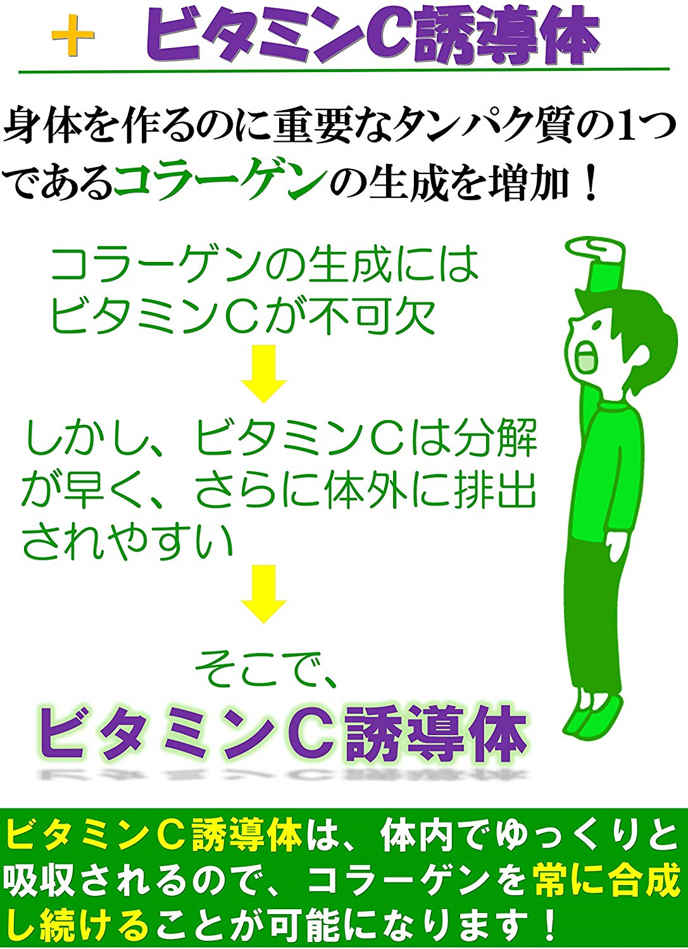 Tảo tăng chiều cao Shin Shin Kakumei Nhật Bản 8-1