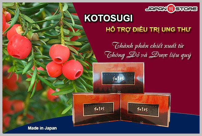 Thuốc điều trị ung thư Kotosugi chiết xuất cây thông đỏ Nhật Bản