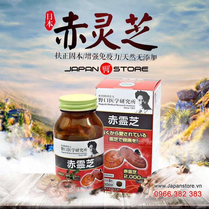Viên uống Nấm Linh Chi Đỏ Reishi Noguchi 2000mg Nhật bản 2