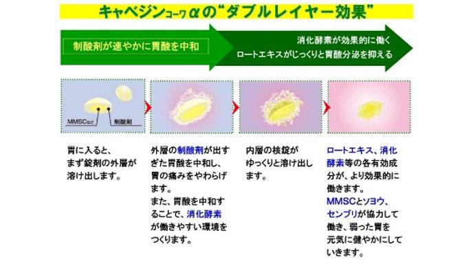 Viên uống hỗ trợ điều trị bệnh đau da dày Kyabejin Kowa α Nhật Bản 300v- www.Japanstore.vn 05