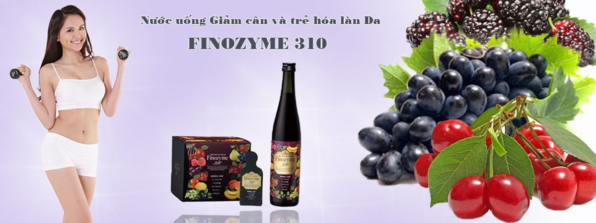 banner finoxyme 310