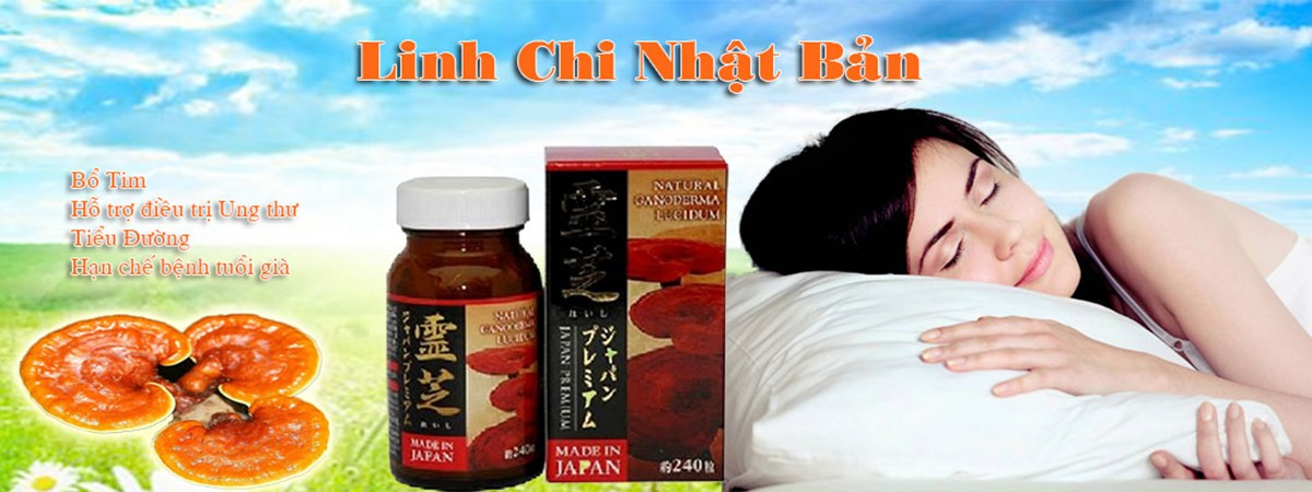 banner lam linh chi sung huou